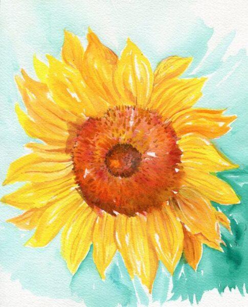 vẽ tranh đề tài hoa hướng dương bông hoa đẹp nhất
