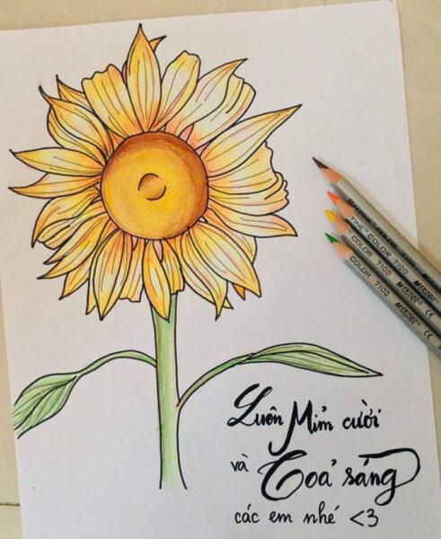 vẽ tranh đề tài hoa hướng dương của học sinh