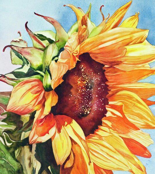 vẽ tranh đề tài hoa hướng dương độc đáo nghệ thuật