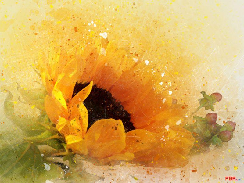 vẽ tranh đề tài hoa hướng dương nghệ thuật đẹp