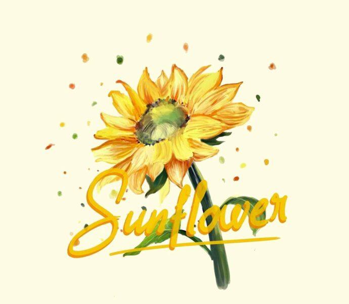 vẽ tranh đề tài hoa hướng dương và chữ sunflower