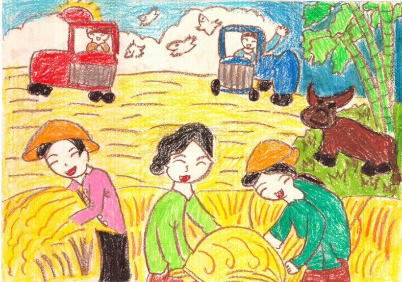 Vẽ tranh mùa thu hoạch lúa