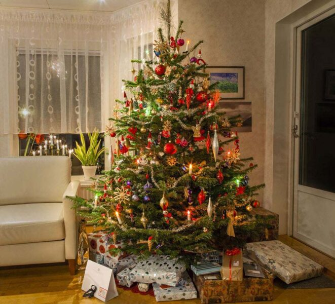 Ảnh cây thông Noel đẹp