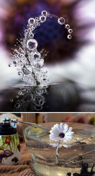Ảnh những giọt nước tuyệt đẹp