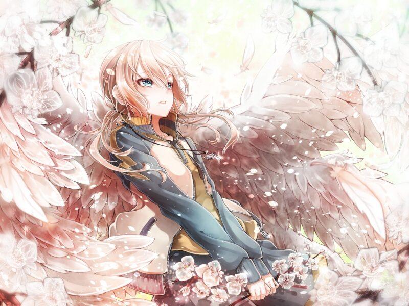anime thiên thần cực dễ thương