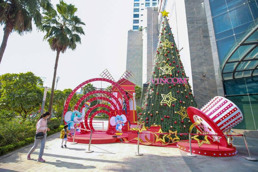 cận cảnh cây thông Noel trước lễ Giáng Sinh
