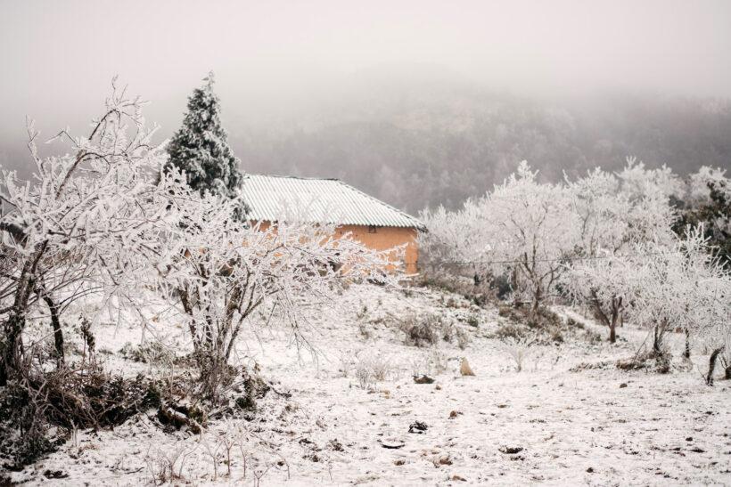 Cảnh tuyết phủ đẹp Sapa