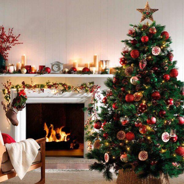 cây thông Noel trong mùa lễ Giáng Sinh