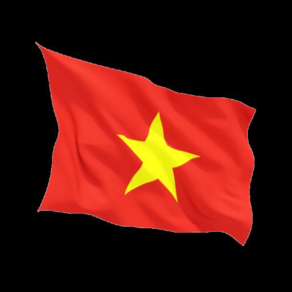 cờ đỏ sao vàng