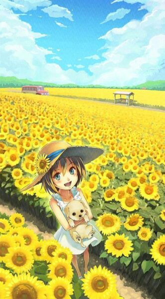 Hình ảnh anime và cánh đồng hoa hướng dương
