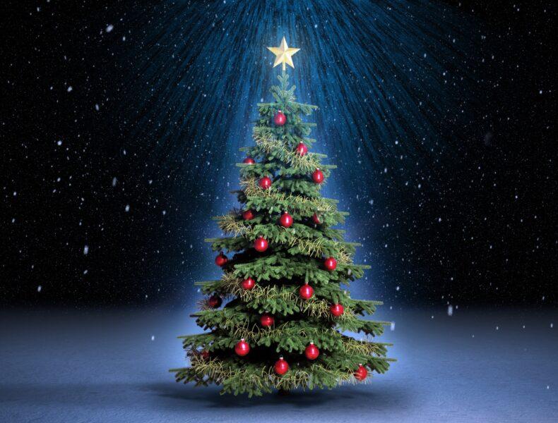 Hình ảnh cây thông Noel đẹp
