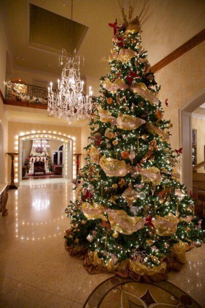 Hình ảnh cây thông Noel được trang trí tuyệt đẹp