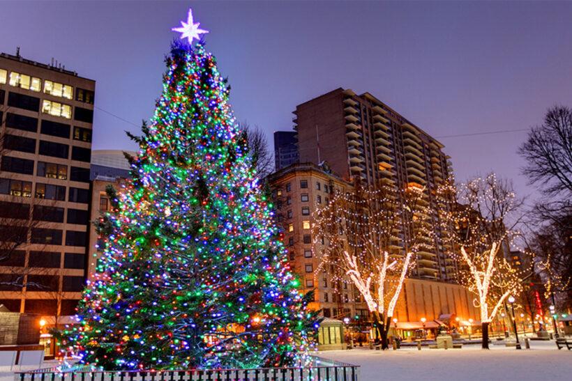 Hình ảnh cây thông Noel lớn nhất