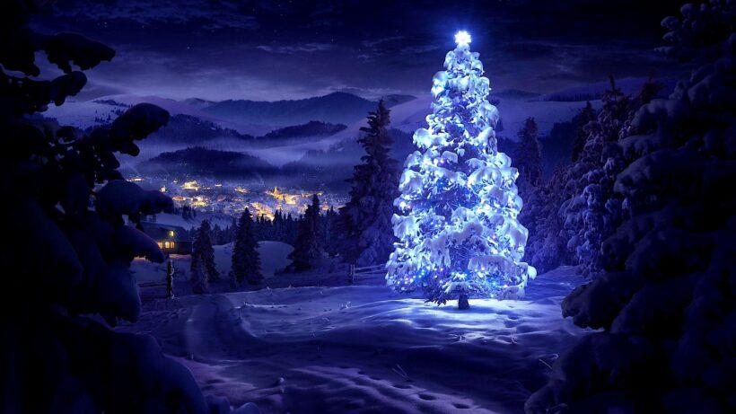Hình ảnh cây thông Noel phủ tuyết sáng rực trong đêm
