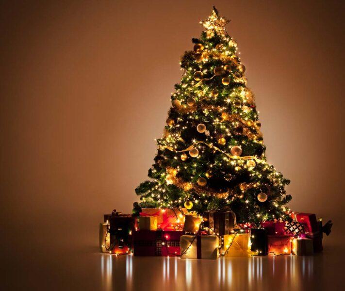 Hình ảnh cây thông Noel sáng lung linh