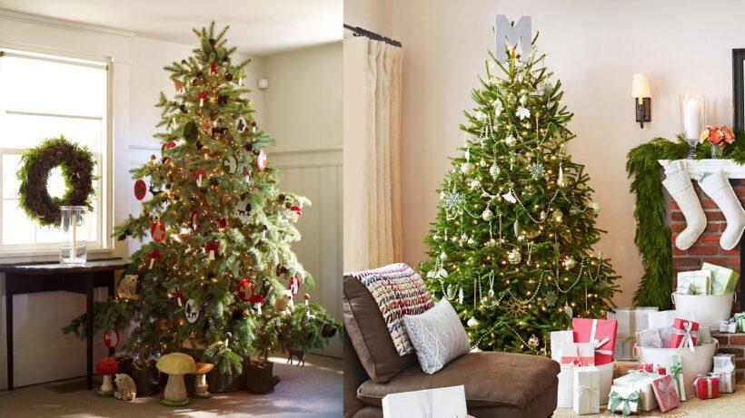 Hình ảnh cây thông Noel trang trí đẹp