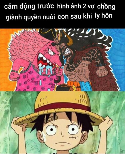 Hình ảnh chế One Piece hay
