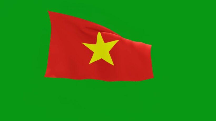 Hình ảnh cờ đỏ sao vàng trên nền xanh lá
