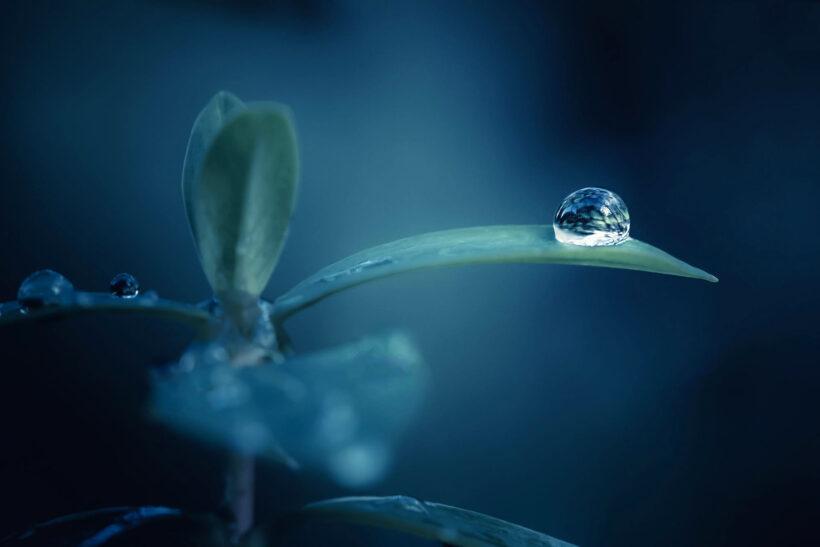 Hình ảnh giọt nước