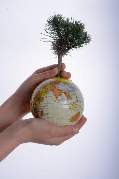 hình ảnh hy vọng - bảo vệ trái đất