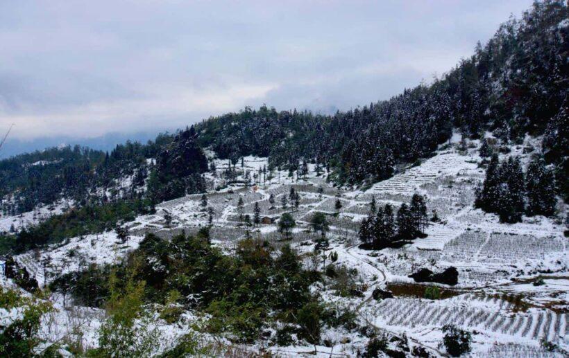 Hình ảnh tuyết phủ Sapa đẹp
