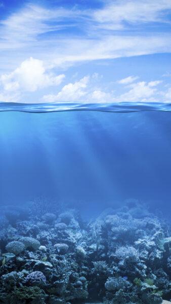 Hình nền biển đẹp cho điện thoại