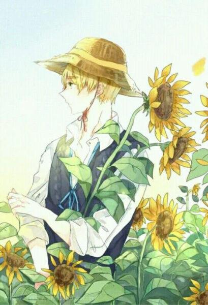 Nam anime hoa hướng dương