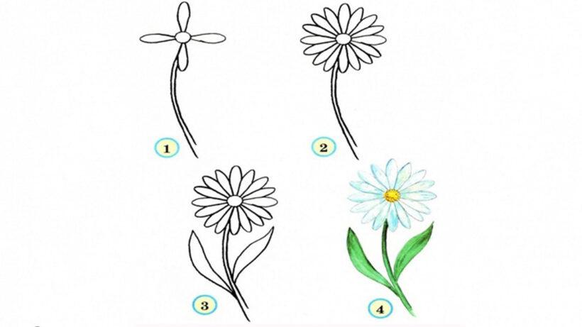 Các bước vẽ bông hoa đơn giản mà đẹp