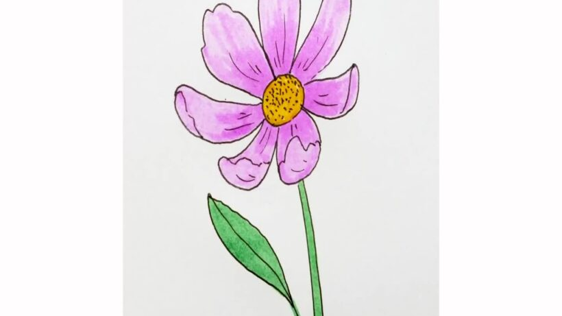 Cách vẽ bông hoa đẹp đơn giản