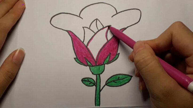 Cách vẽ bông hoa đơn giản