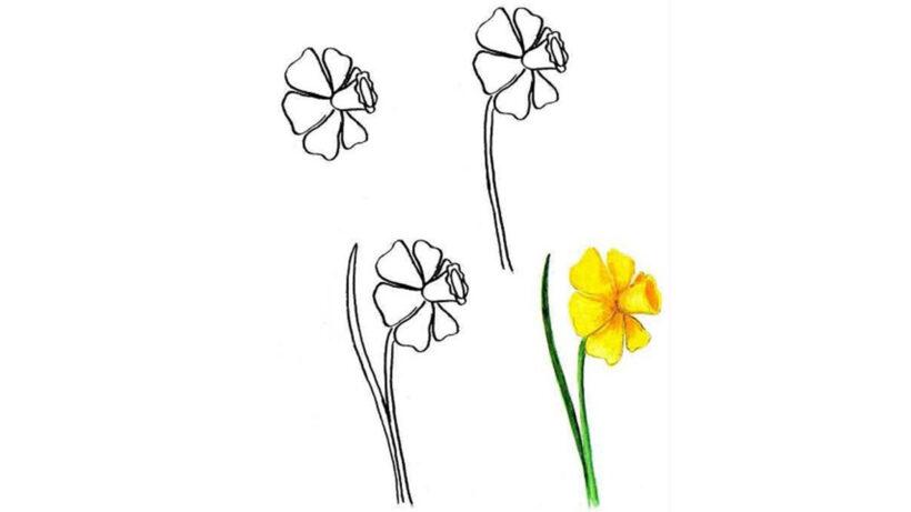 Cách vẽ bông hoa đơn giản màu vàng
