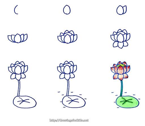 Cách vẽ bông hoa Sen siêu đẹp