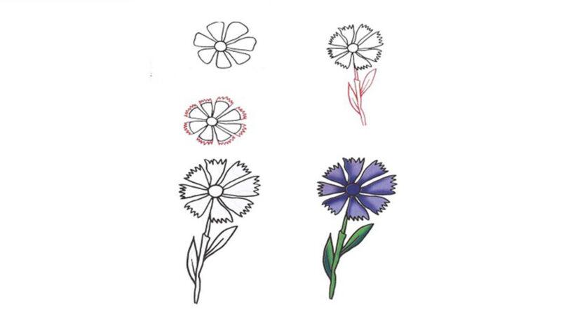 Cách vẽ bông hoa siêu đẹp