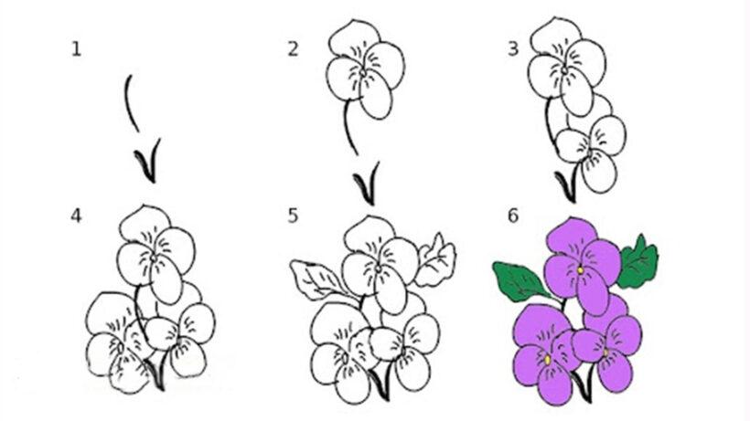 Cách vẽ bông hoa tím