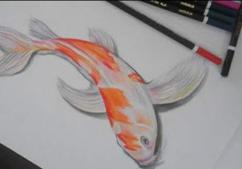 Cách vẽ Cá Chép 3D