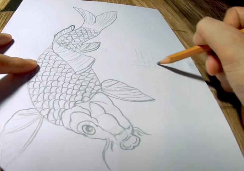 Cách vẽ Cá Chép bằng bút chì