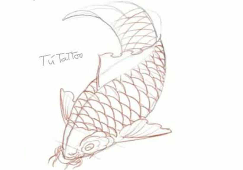 Cách vẽ Cá Chép đơn giản nhất