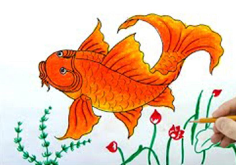 Cách vẽ Cá Chép vàng