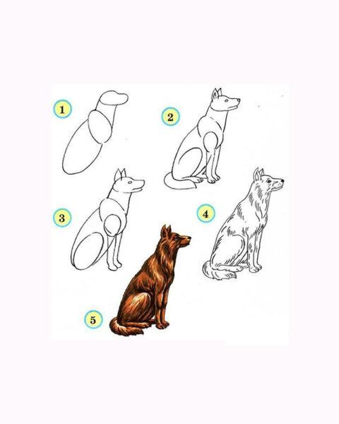 Cách vẽ con Chó Sói