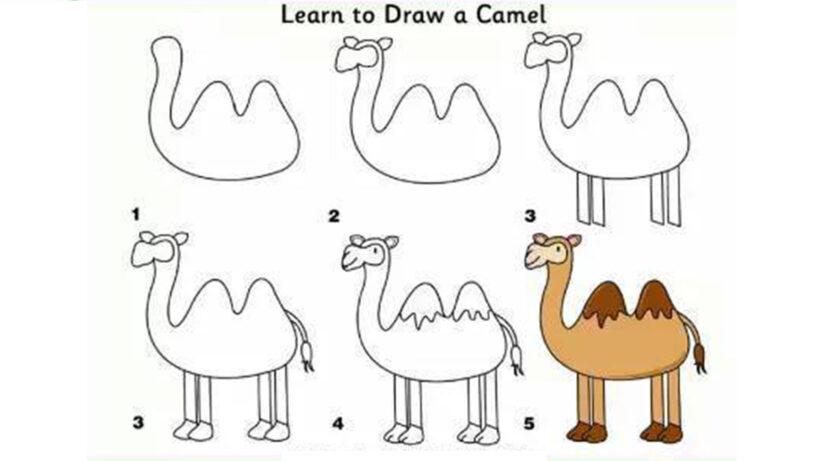 Cách vẽ con Đà Điểu