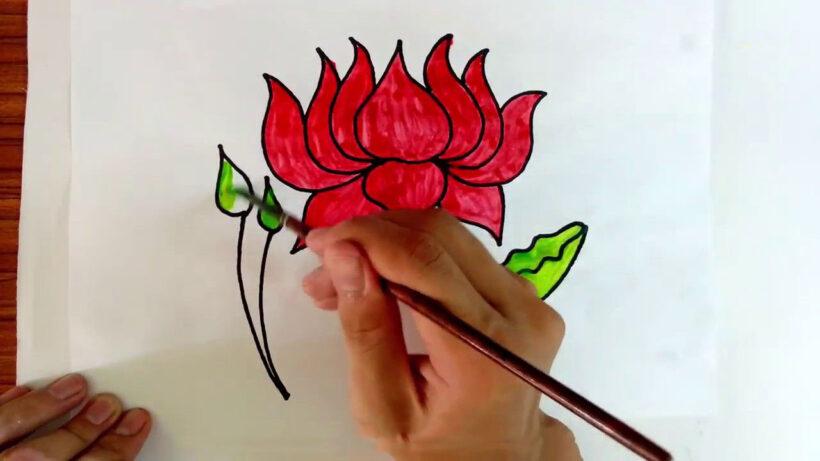 Cách vẽ hoa Sen đơn giản nhất