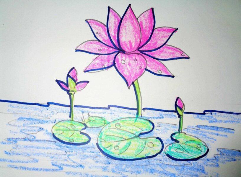 Cách vẽ hoa Sen đơn giản tặng mẹ