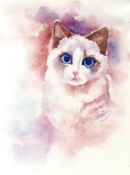 Cách vẽ mèo bằng màu nước