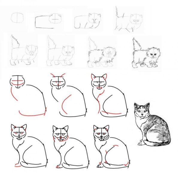 Cách vẽ mèo đẹp