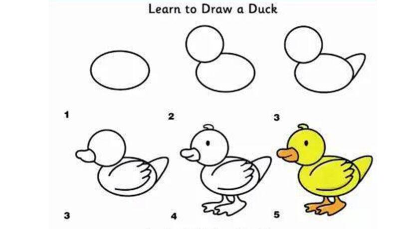 Cách vẽ Vịt con