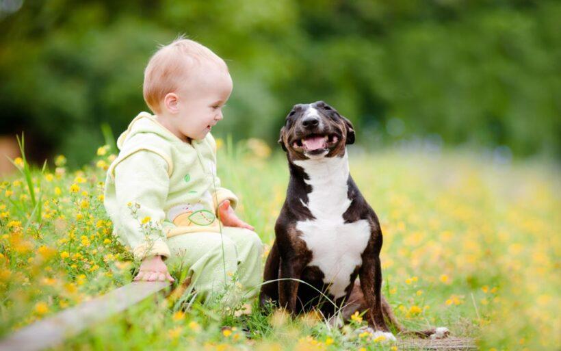 Hình ảnh baby bên cạnh chúc chó cực cute