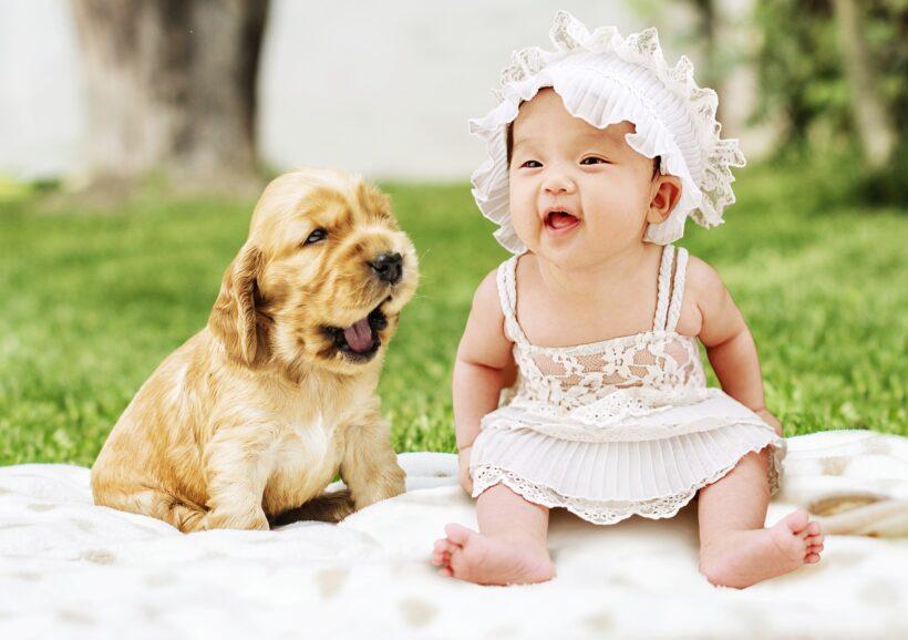Hình ảnh baby và cún con dễ thương