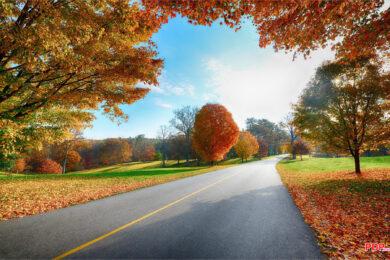 Hình ảnh con đường đẹp nhất