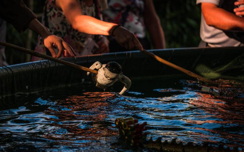 hình ảnh múa rối nước truyền thống