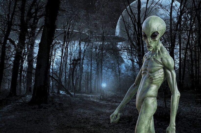 Hình ảnh người ngoài hành tinh ở trong rừng